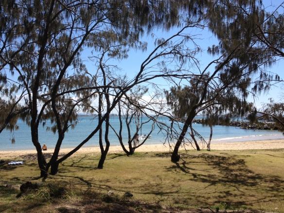 sunny coast.